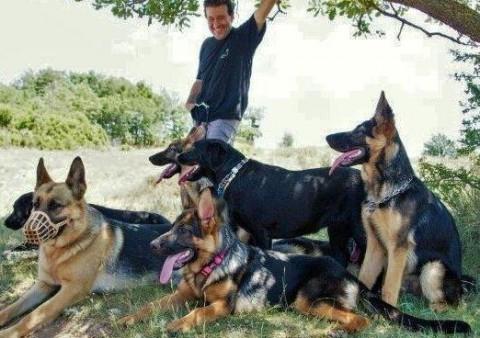 jordi gros educacio natural del gos 6 -cercatot.com