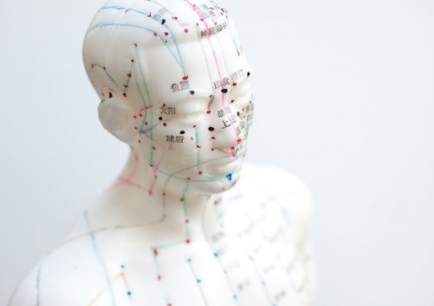 acupuntura i moxibustio dani mir curos 10 -www.cercatot.com