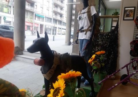 natura i gos -vic- www.cercatot.com- 9